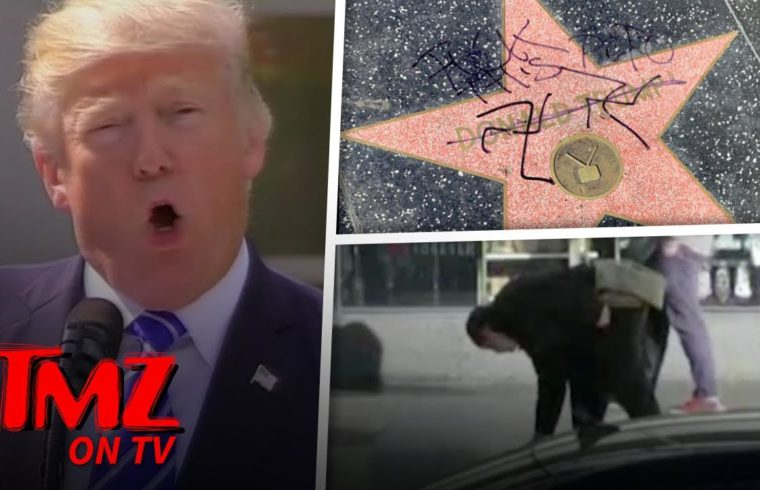 Donald Trump's Hollywood Walk of Fame Star Doused with Fake Blood, After Swastikas | TMZ TV 1