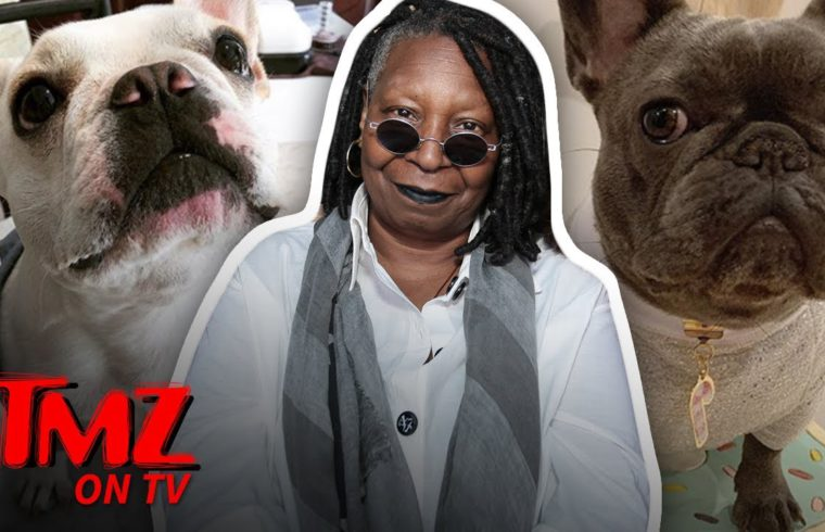 Whoopi Goldberg's Family Dog Is Getting Married! | TMZ TV 1