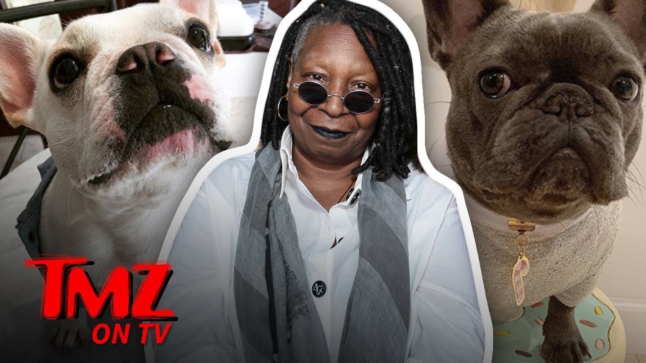 Whoopi Goldberg's Family Dog Is Getting Married! | TMZ TV 5