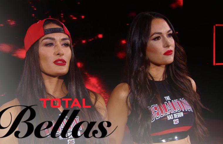 Nikki & Brie Bella Are Ready for Their Comeback   Total Bellas   E! 1