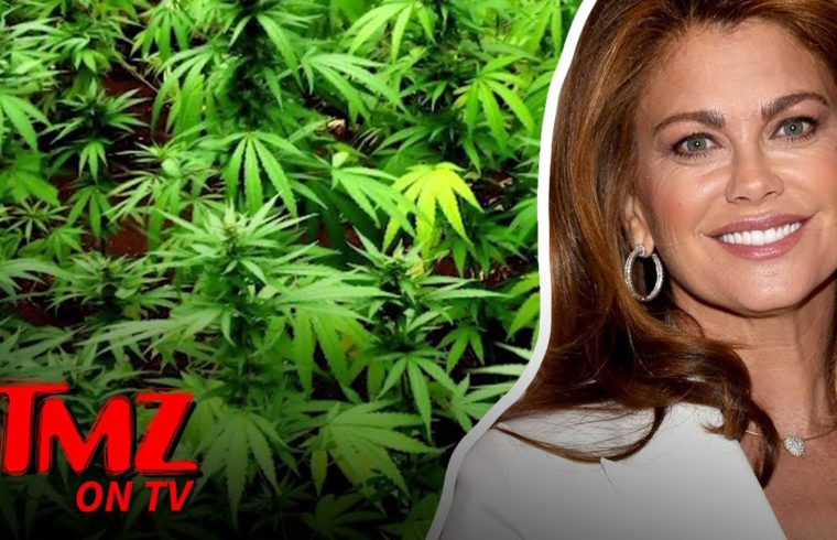 Supermodel Wants To Bring CBD To The NFL | TMZ TV 1