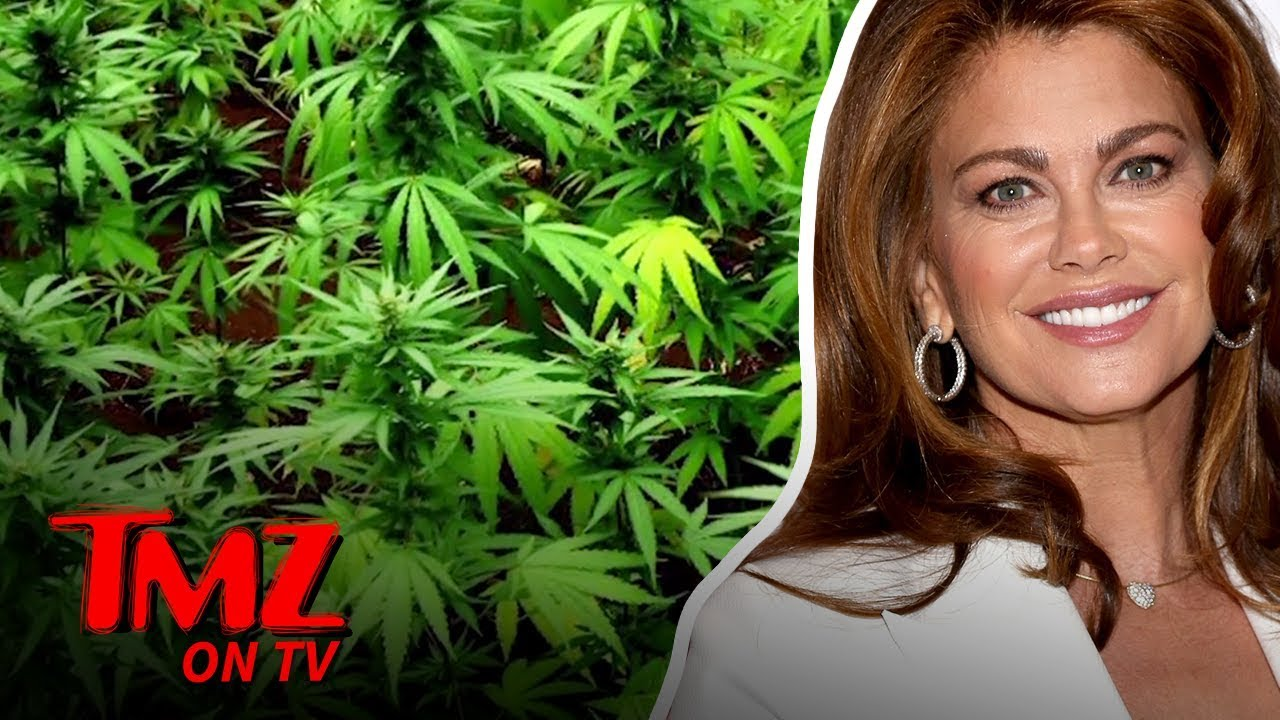 Supermodel Wants To Bring CBD To The NFL | TMZ TV 4