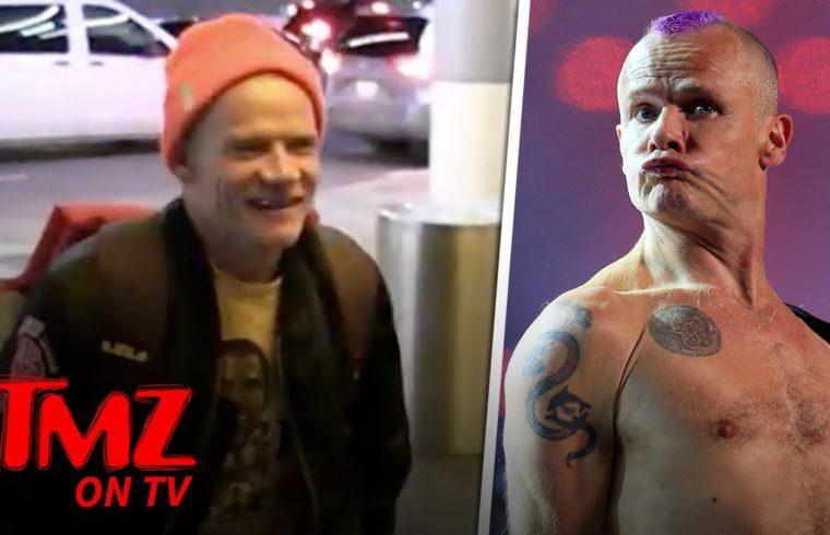 Red Hot Chili Peppers' Flea Says The Boston Celtics SUCK    TMZ TV 1