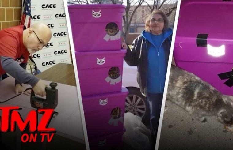 Polar Vortex Sparks Stray Cat Mission In Chicago   TMZ TV 1