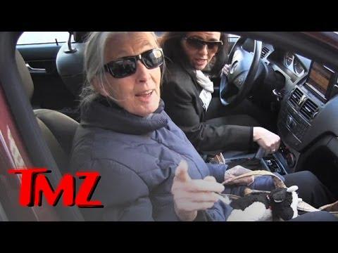 Chimp Expert Jane Goodall -- Bubbles Was Beaten On Michael Jackson's Watch | TMZ 5