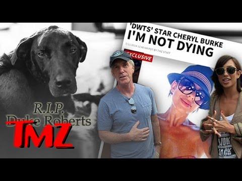 Cheryl Burke Denies Dying Rumors | TMZ 5