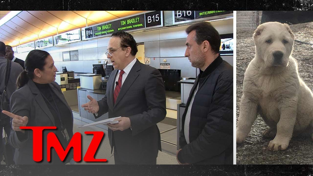Family of Dead Dog Confronts Air France-KLM Official But Gets Stonewalled | TMZ 4