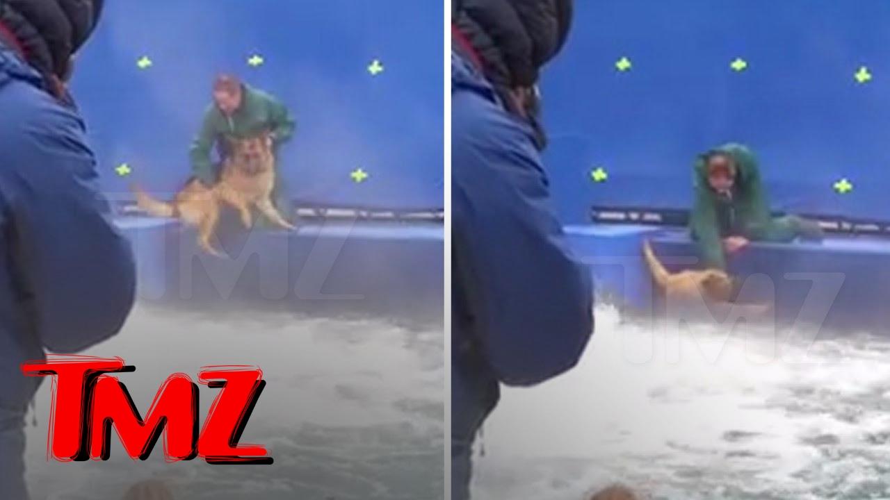 A DOG'S PURPOSE' TERRIFIED GERMAN SHEPHERD FORCED INTO TURBULENT WATER | TMZ 4