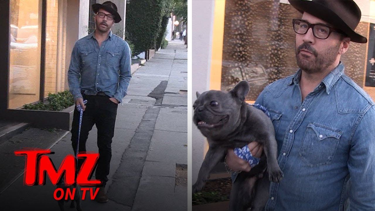 Jeremy Piven Forgets His Dog In The Car While He Goes To A Restaurant | TMZ TV 4